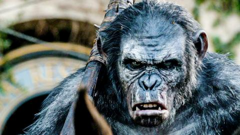 Top 10 Planet of The Apes Reboot Facts