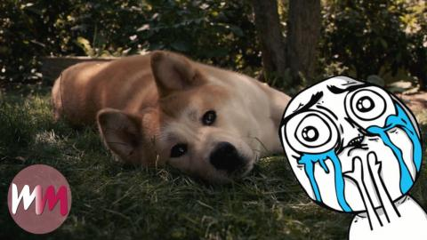 Top 10 Heartwarming Dog Stories That Will Give You the Feels