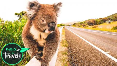 Top 10 Road Trips in Australia