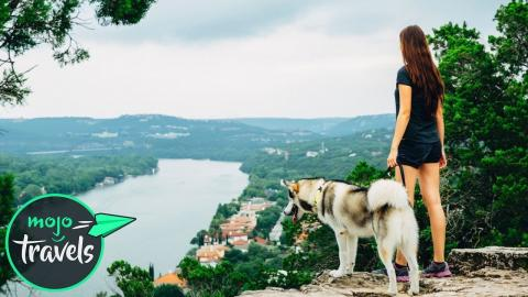 Top 10 Places to Travel With Your Dog in North America