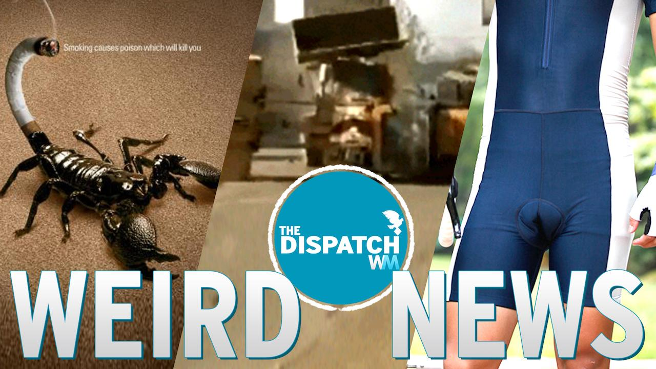 High on Scorpions, Bulldozer Battles & Spandex Bulge: The Dispatch #24
