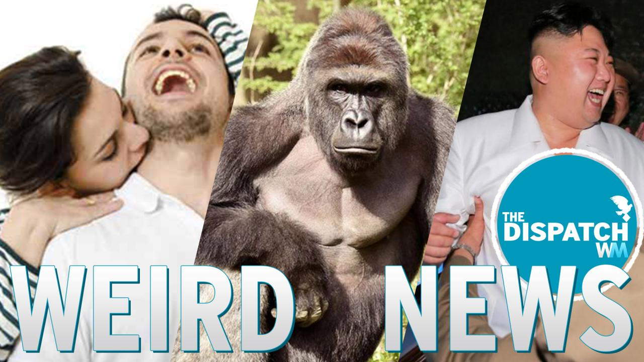 Harambe Spotted, Real Kiss of Death & N. Korea Missile Party: The Dispatch #34