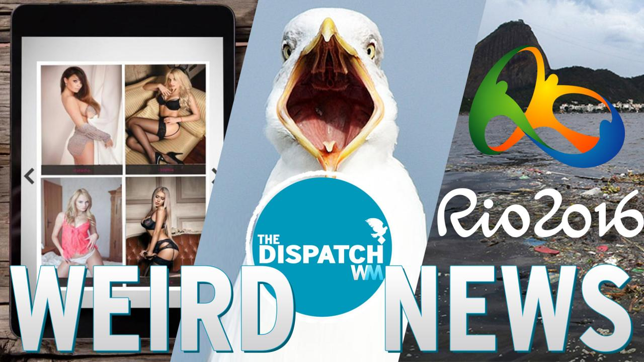 BJ Café, Stoned Seagulls & The Odorous Olympics: The Dispatch #32